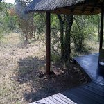 Impodimo Game Lodge Foto
