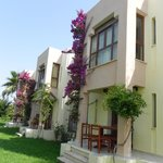 Photo of Golden Beach Club Colakli