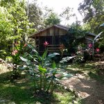 Foto Moonracer Farm Lodging & Tours