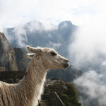 View Peru & Signatures - Day Tours