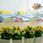 Egg Hostel korea