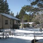 Lakewood Cabins at Big Bear Lake resmi
