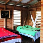Belize Zoo Jungle Lodge