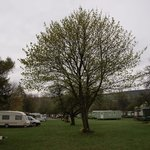  Overview Campsite