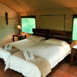 Sausage Tree Safari Camp