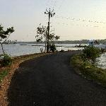 Road thru nearby shrimp farm (a very nice evening walk)