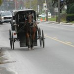  Loved seeing and hearing the Amish buggies from our room, while touring the Village at Kitchen K