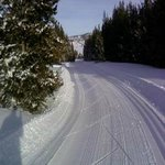 Beaver Creek Nordic Ski Area