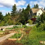 Photo de Husum Highlands Bed and Breakfast