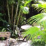 Photo of Key West Bed and Breakfast
