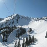 Snowbird Ski and Summer Resort照片