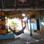 Bigfoot Hostel resmi