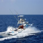 Mad Marlin Sportfishing
