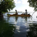 Florida Keys Kayaks and Eco Tours