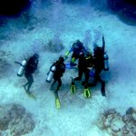 Scuba Outfitters of Naples, LLC