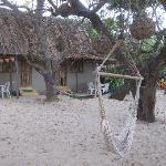 Bilde fra Junto al Rio Beachfront Bungalows and Suites