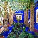  Le Jardin de Majorelle