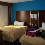 Foto Comfort Suites Airport & Cruise Port