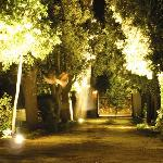  viale di notte
