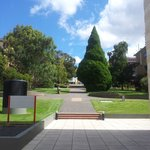 University of Tasmania