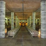 Cortona Wine Tours