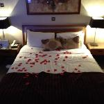 Rose petals lay'd over the bed and room