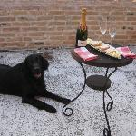 Aperitivo with Mr. Bacco