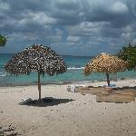 Photo de Pro excursions Bayahibe
