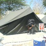 Tent zone accommodation - !