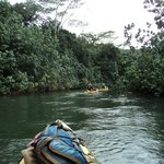 An easy paddle on the Wailua River