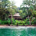 ‪Copa de Arbol Beach and Rainforest Resort‬