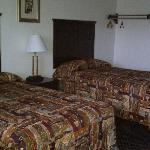 Foto van Country Hearth Inn and Suites Delmar