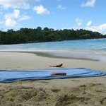 Winnifred Beach