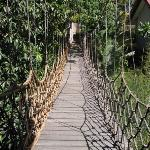hanging bridge up close
