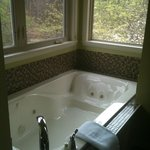  cedar manor jacuzzi