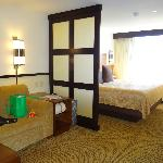 Delux King Room.  There is a divider between bed and sitting are