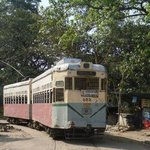 Kolkata Trams