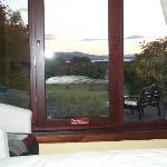  patio doors from bedroom into garden