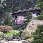 Hakone Gardens