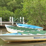 Madoo Bird Tours
