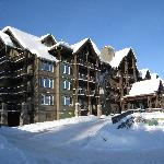 Photo de Palliser Lodge