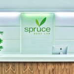 Spruce Body Lab