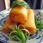 Yummy Spring Roll