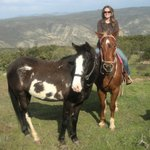 All the Pretty Horses of Baja Rescue and Rides