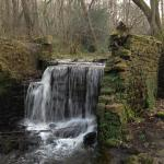 Rivelin Valley Nature Tra