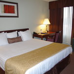 Best Western Sovereign Hotel Albany