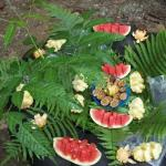  Fruit Picnic in the junglecamp