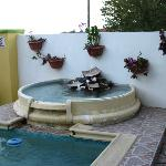 Lovely Pool in the garden