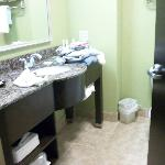 Φωτογραφία: Holiday Inn Express Hotel & Suites Newport South