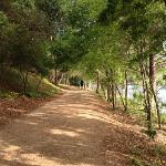 Photo of Lady Bird Lake Hike-and-Bike Trail